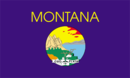 флаг штата Монтана